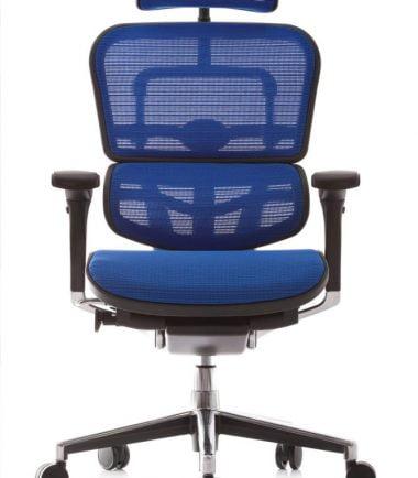 Ergohuman chair blue Mesh