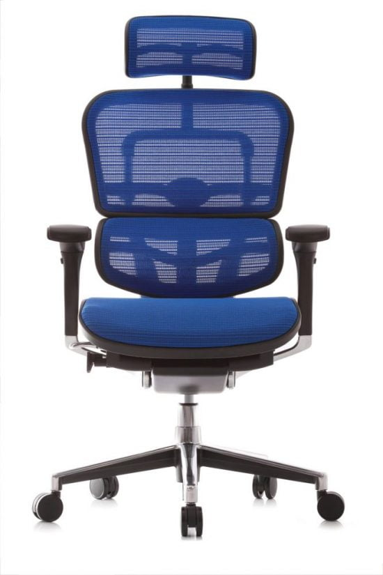 Ergohuman chair blue Mesh