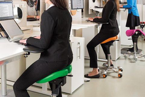 Salli saddle in office